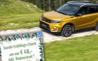 Suzuki FRÜHLINGS-CHECK