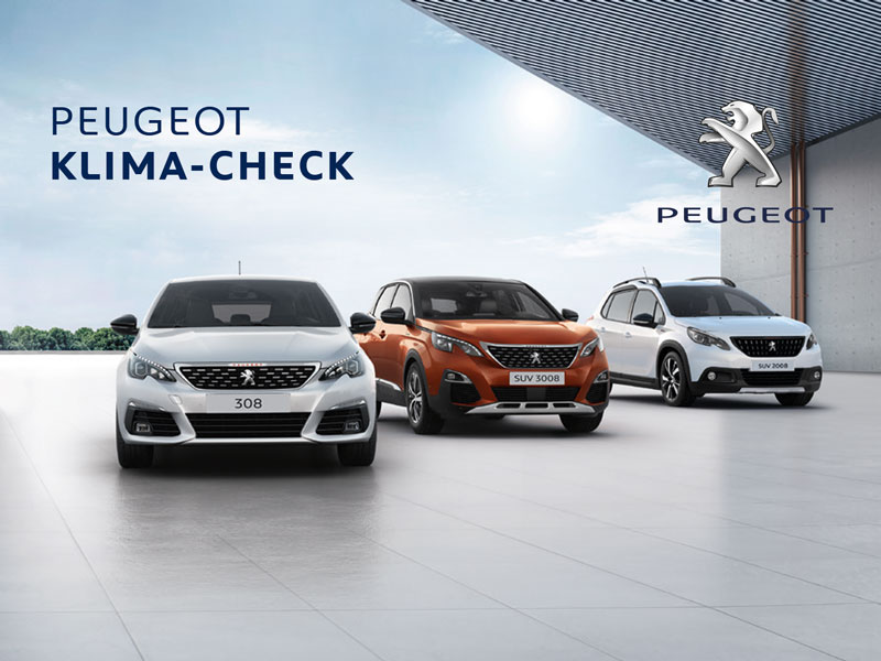 Peugeot KLIMA-CHECK
