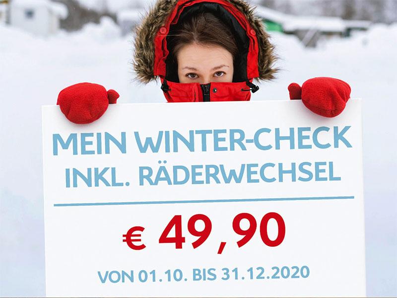 Citroen Wintercheck